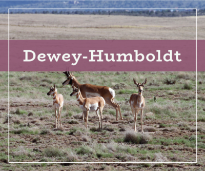 Dewey-Humboldt Real Estate